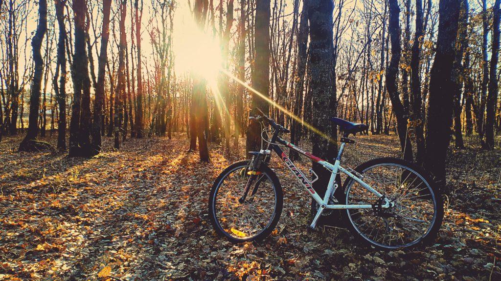 長距離サイクリングは安定性のある太めのタイヤがおすすめ
